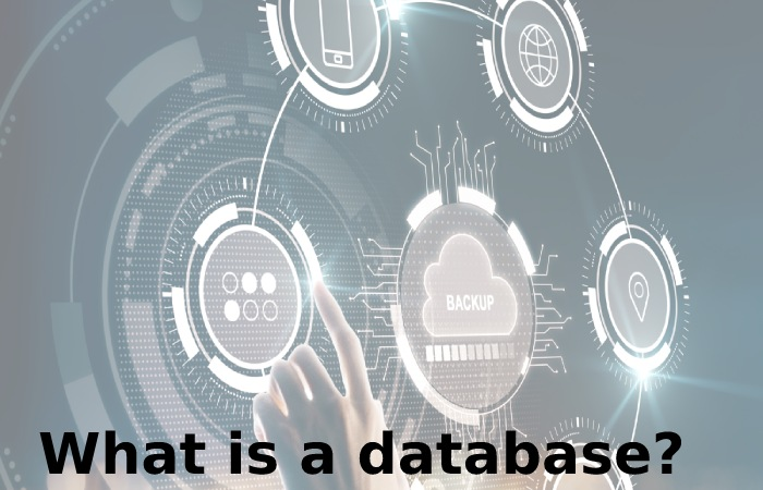 Types of databases (2)